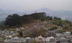 20110330-chunlong4
