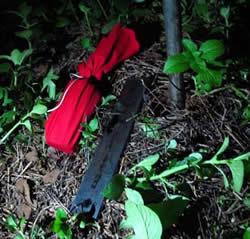 【種生基】2011年8月21天赦日種生基團正式開團