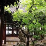 園林植物與風水含義