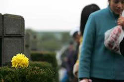 中國大陸殯葬基本服務將實行政府定價