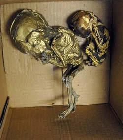 【養小鬼】泰國警方查獲鍍金嬰尸,令城中再起熱話