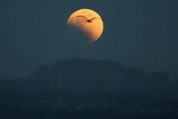【天文】中國東部2012年6月4日將現月偏食