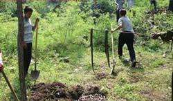 【奇聞】放生放出禍,游客野外放生數千條蛇引恐慌