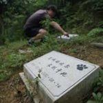 【生活風水】中國新興【寵物公墓】購墓地3999元起
